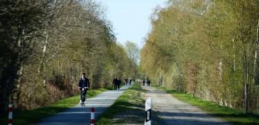 Wir setzen uns für einen Ausbau der Radwege ein